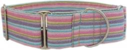 Fancy Collar: MB310-1.5 Cotton Candy Stripe Cotton Percale - Click For Enlargement